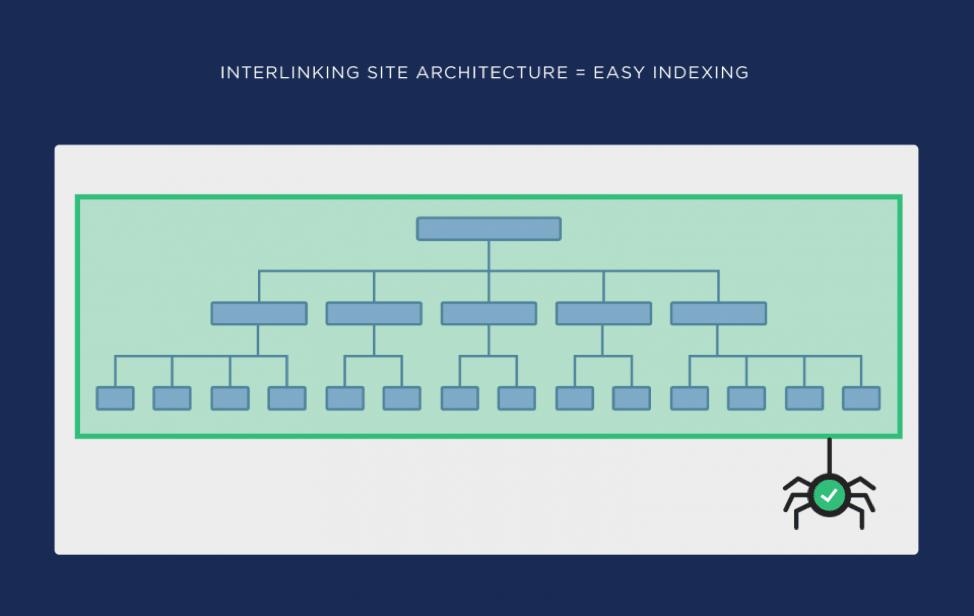 ساختار سایت درست